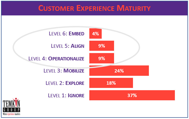 CX maturity Temkin