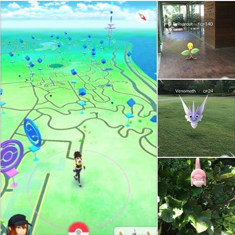 PokeStops and Gyms @Dallas Arboretum and Botanical Garden - image 3