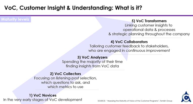 VoC Maturity Levels