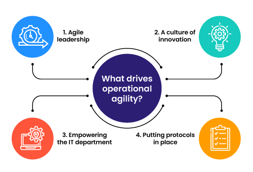 What drives operational agility