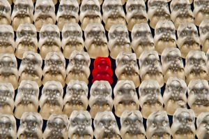 It takes effort to stand out in a sea of sameness. Photo by Ronile/Pixaby