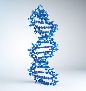 customer centric DNA
